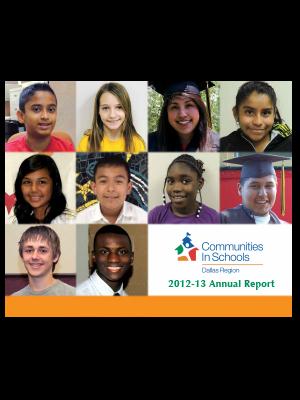 2012-13 CISDR Annual Report