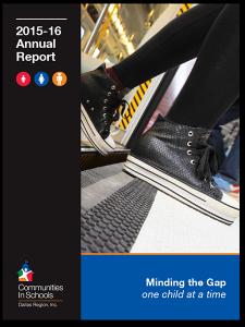 2016-17 CISDR Annual Report