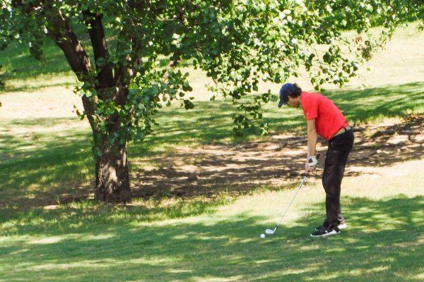Golf 2020 295 - Team 15 - Martin
